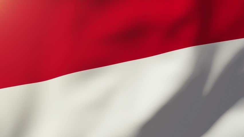 Monaco flag waving in the wind. Looping sun rises style.  Animation loop | Shutterstock HD Video #9192725