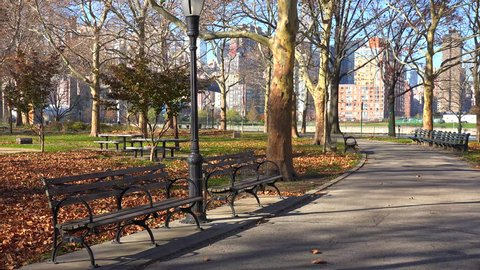 NEW YORK CITY - CIRCA 2015 - Autumn leaves blanket a lonely park in New York City with park benches all around.