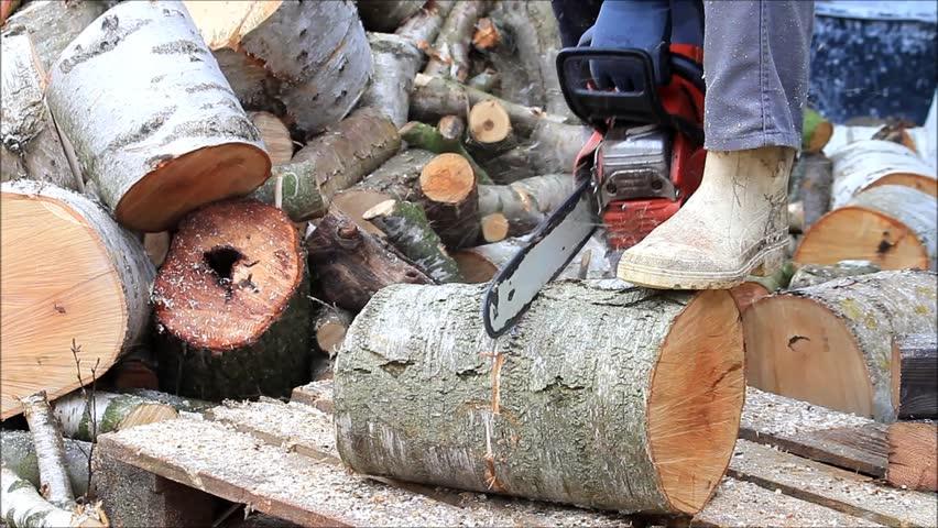 uk saatavuus erityinen tarjous ostaa suosittuja Worker with Gas Chain Saw, Stock Footage Video (100% Royalty-free) 9284015    Shutterstock