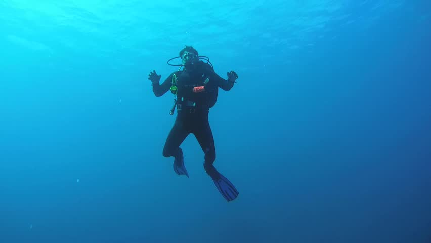 RED SEA, STRAIT OF GUBAL, EGYPT - OCTOBER, 2014: Diver looking at a schools of fish on the coral reef, Red Sea, Egypt   | Shutterstock HD Video #9896435