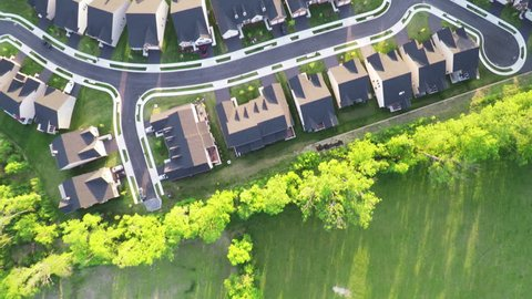 Aerial Above Forest and Neighborhood Trees